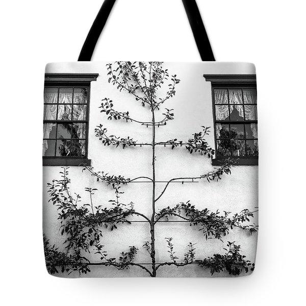 Tree Sculpture Tote Bag