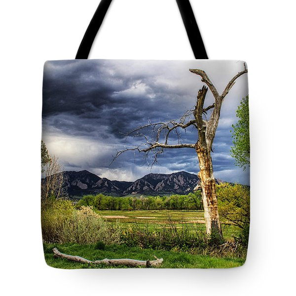Tree Sculpture Tote Bag