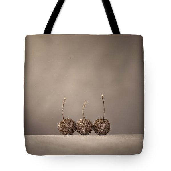 Tree Seed Pods Tote Bag