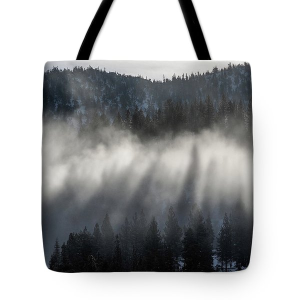 Tree Shadows Tote Bag