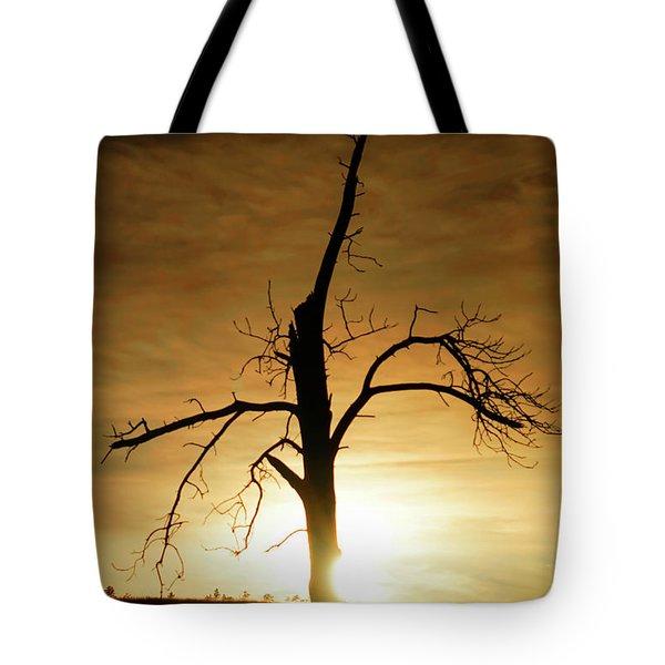 Tree Silhouette At Sundown Tote Bag