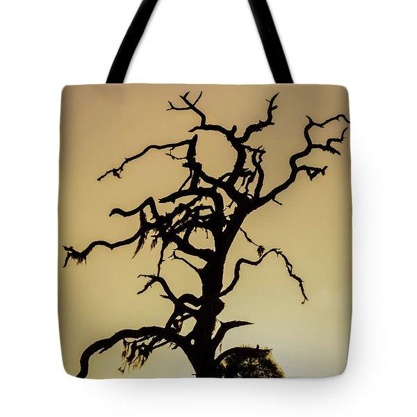 Tree Silhouette Tote Bag