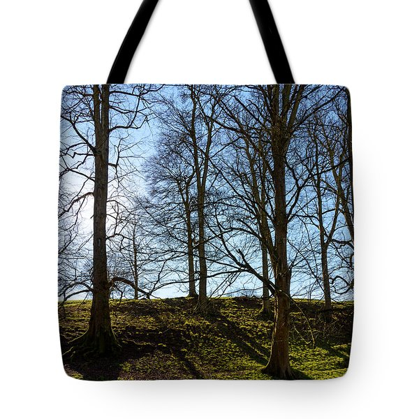 Tree Silhouettes Tote Bag