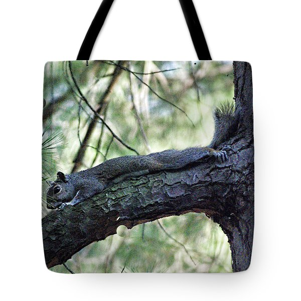 Tote Bag featuring the photograph  Tree Squirrel by B Wayne Mullins