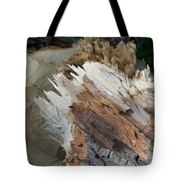 Tree Stump Tote Bag