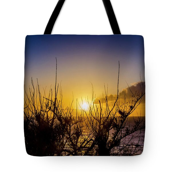 Tree Sunset Tote Bag