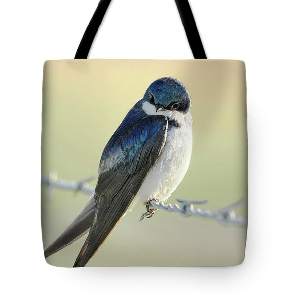 Tote Bag featuring the photograph Tree Swallow by Jennie Marie Schell