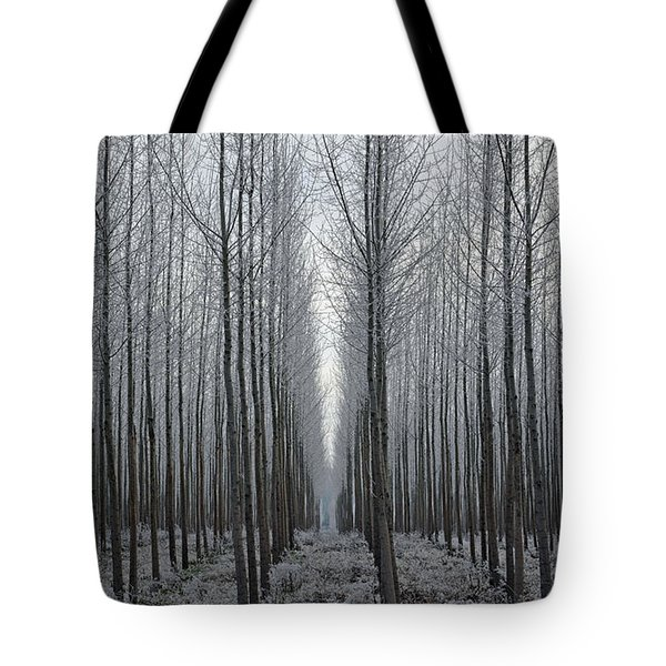 Tree Symmetry Tote Bag