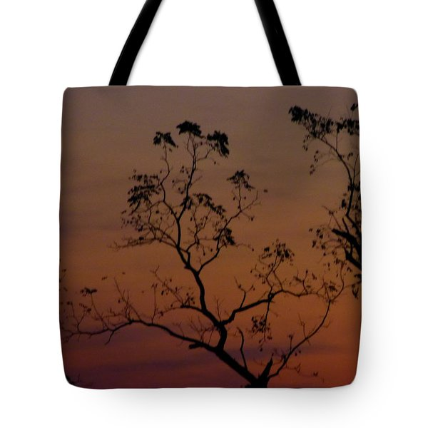 Tree Top After Sunset Tote Bag by Donald C Morgan