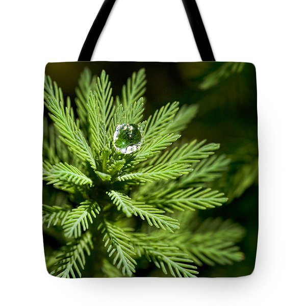 Tree Top Dew Drop Tote Bag by Christopher Holmes