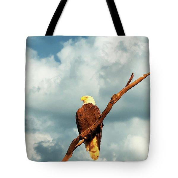 Tree Top Eagle  Tote Bag
