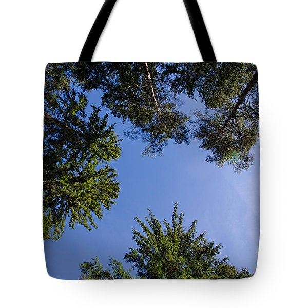 Tote Bag featuring the photograph Tree Tops From Low Angle by Kennerth and Birgitta Kullman