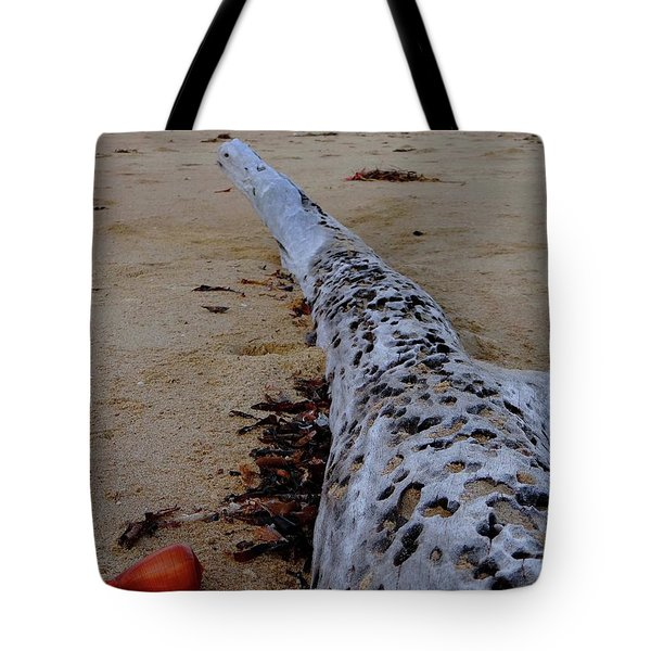 Tree Trunk And Shell On The Beach Full Size Tote Bag by Exploramum Exploramum