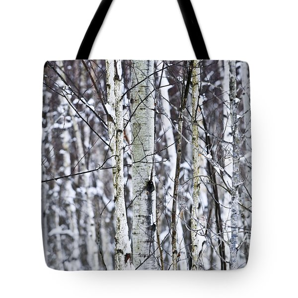 Tree Trunks Covered With Snow In Winter Tote Bag by Elena Elisseeva