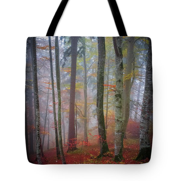 Tote Bag featuring the photograph Tree Trunks In Fog by Elena Elisseeva