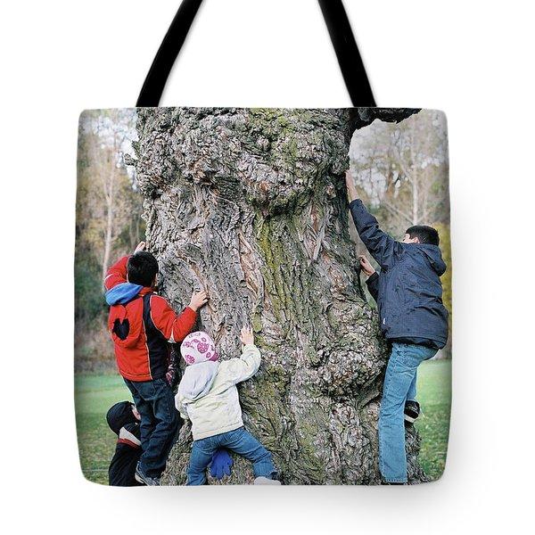 Tree Urchins Tote Bag