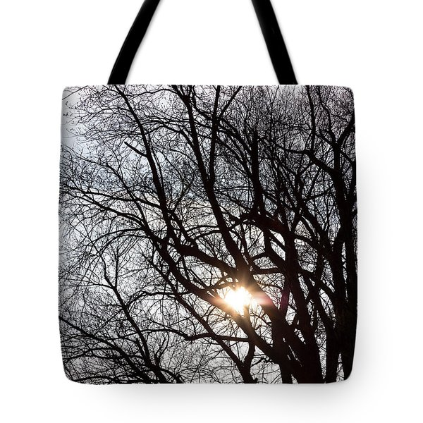 Tote Bag featuring the photograph Tree With A Heart by James BO Insogna