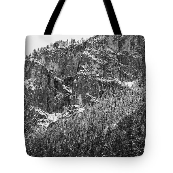 Tote Bag featuring the photograph Treefall by Lora Lee Chapman