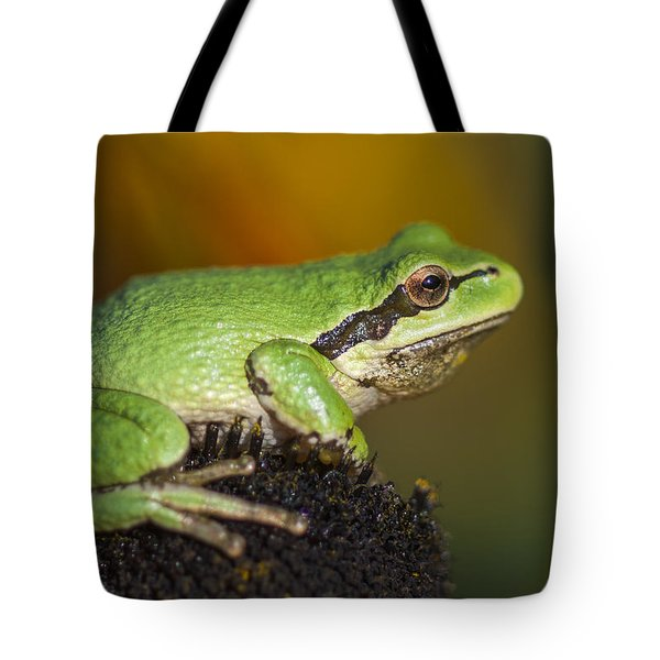 Treefrog On Rudbeckia Tote Bag