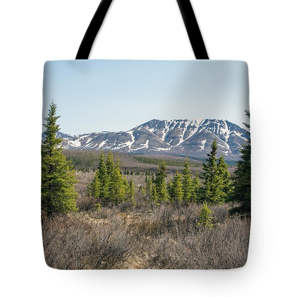 Treeline In Denali Tundra Wilderness Tote Bag by Allan Levin