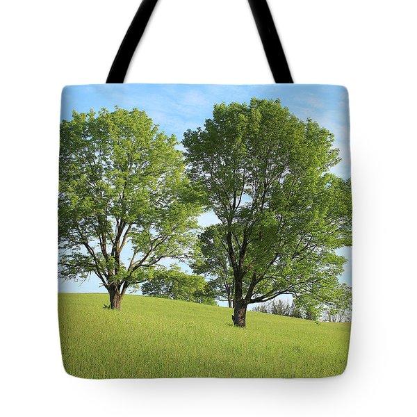 Summer Trees 4 Tote Bag
