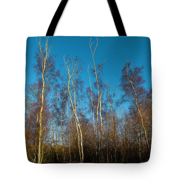Trees And Blue Sky Tote Bag