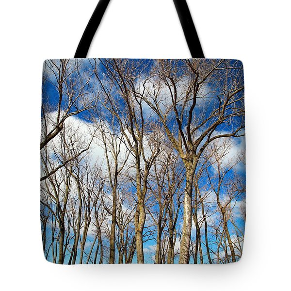Tote Bag featuring the photograph Trees And Clouds by Valentino Visentini
