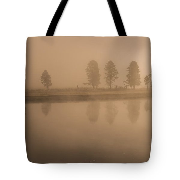 Tote Bag featuring the photograph Trees And Fog by Gary Lengyel