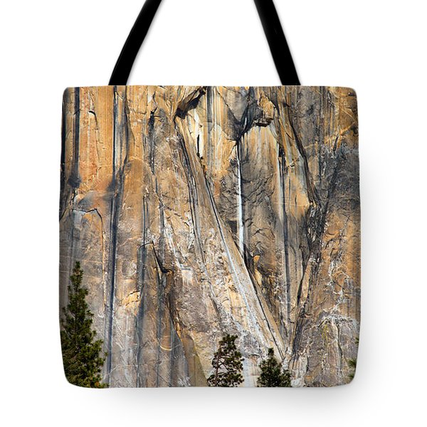 Trees And Granite Tote Bag by Josephine Buschman