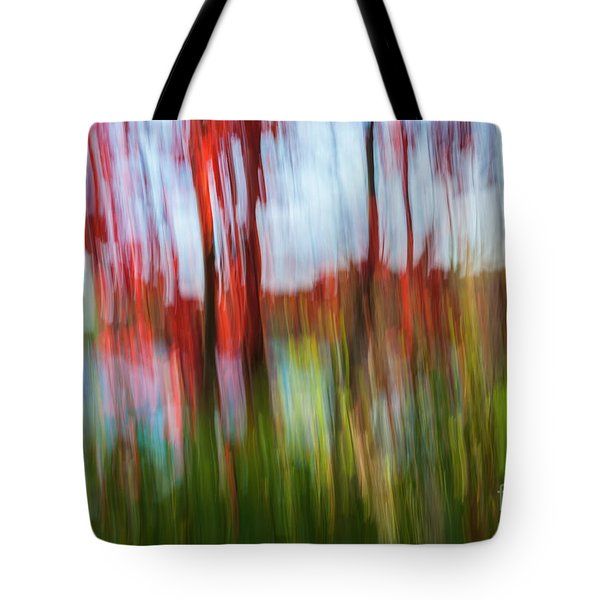 Tote Bag featuring the photograph Trees And Lake by Elena Elisseeva
