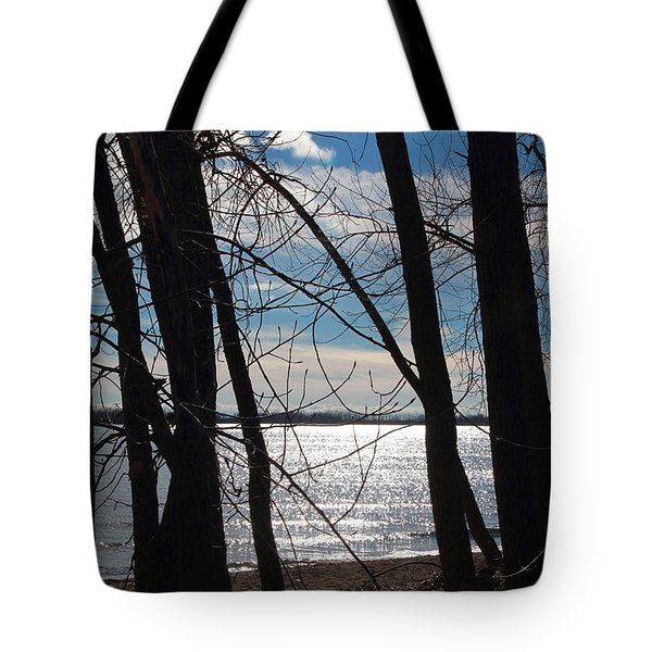 Tote Bag featuring the photograph Trees And Lake Reflections by Valentino Visentini
