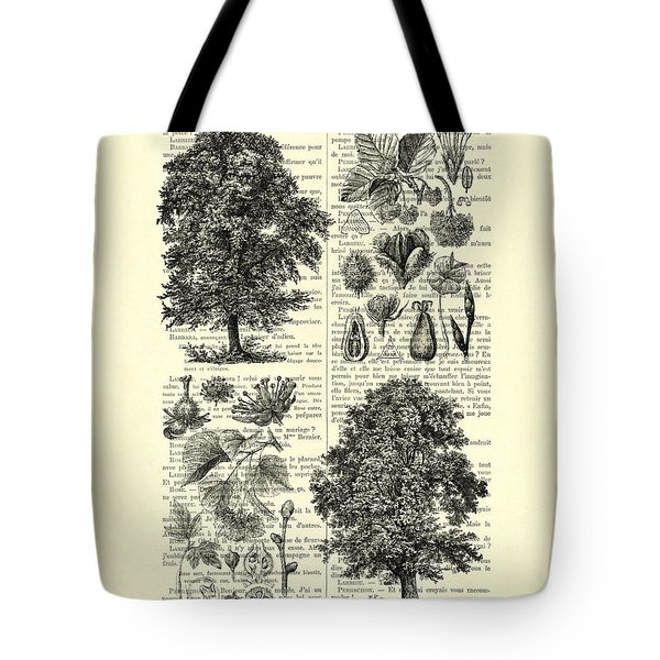Trees And Seeds Black And White Tote Bag