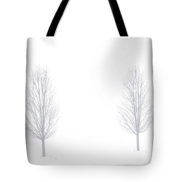 Trees And Snow Tote Bag by Daniel Thompson