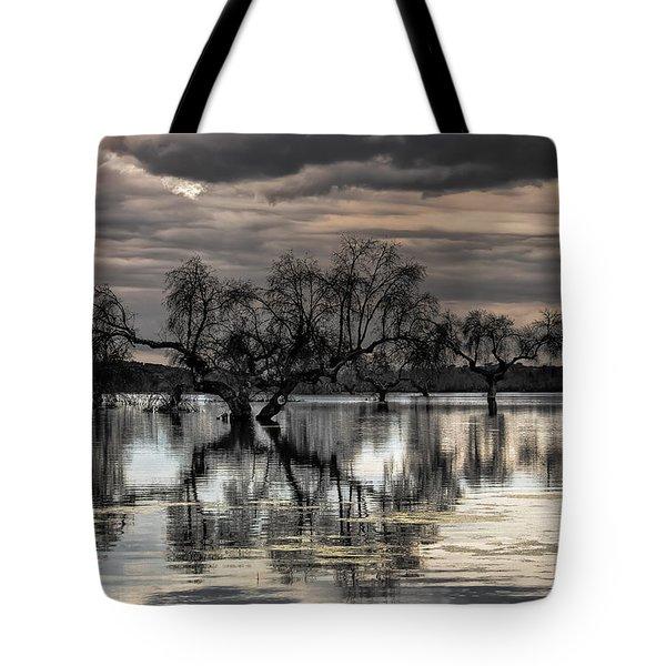 Trees Dream Tote Bag
