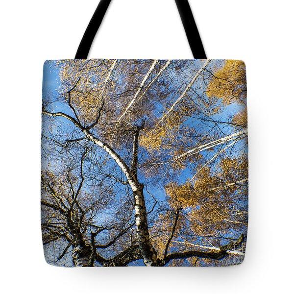 Trees Grow To The Sky Tote Bag