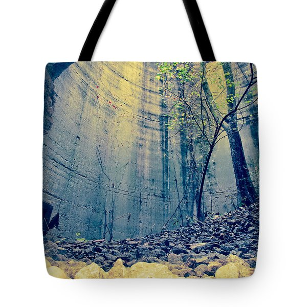 Trees Growing In Silo - Anitque Yellow Landscape Tote Bag by Tony Grider