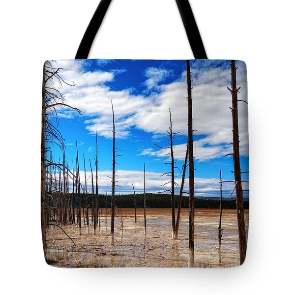 Tote Bag featuring the photograph Trees In The Midway Geyser Basin by Lars Lentz