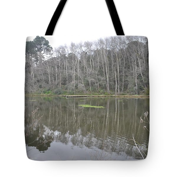 Trees Tote Bag by Linda Ferreira