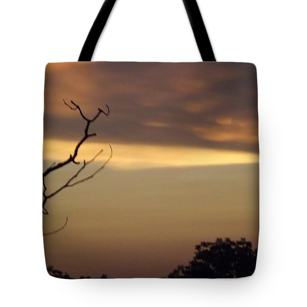 Trees Of The Lake Tote Bag by Don Koester