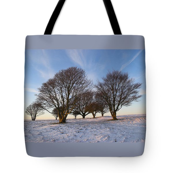 Trees On The Ring Tote Bag by Hazy Apple