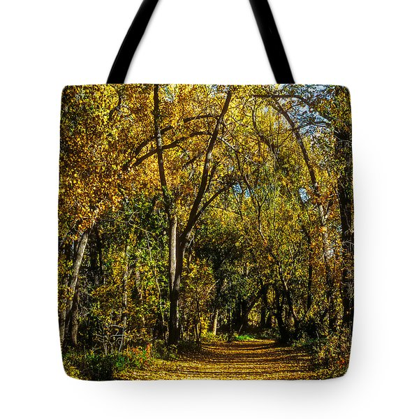Trees Over A Path Through The Woods In Fall Color Tote Bag by John Brink