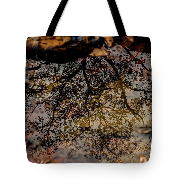 Tote Bag featuring the photograph Tree's Reflection by Iris Greenwell