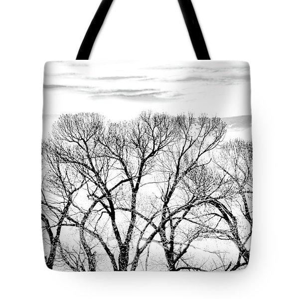 Tote Bag featuring the photograph Trees Silhouette Black And White by Jennie Marie Schell