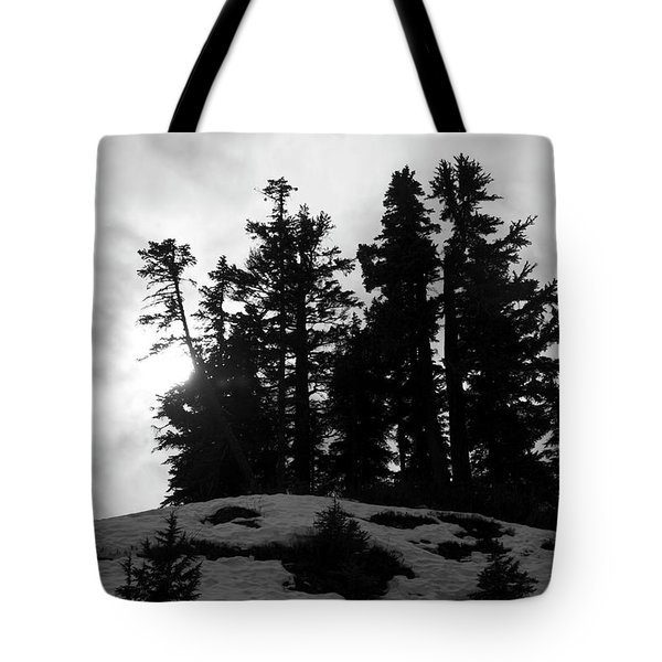 Tote Bag featuring the photograph Trees Silhouettes by Yulia Kazansky