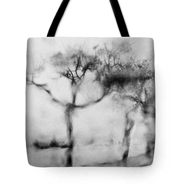 Trees Through The Window Tote Bag