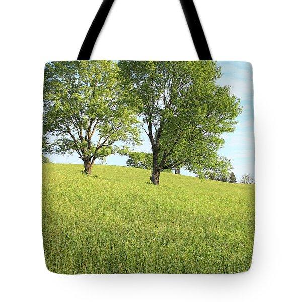 Summer Trees 2 Tote Bag