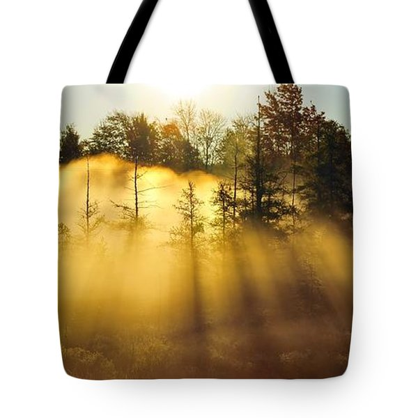 Treetop Shadows Tote Bag