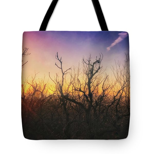 Treetop Silhouette - Sunset At Lapham Peak #1 Tote Bag by Jennifer Rondinelli Reilly - Fine Art Photography