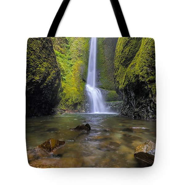 Trek To Lower Oneonta Falls Tote Bag by David Gn