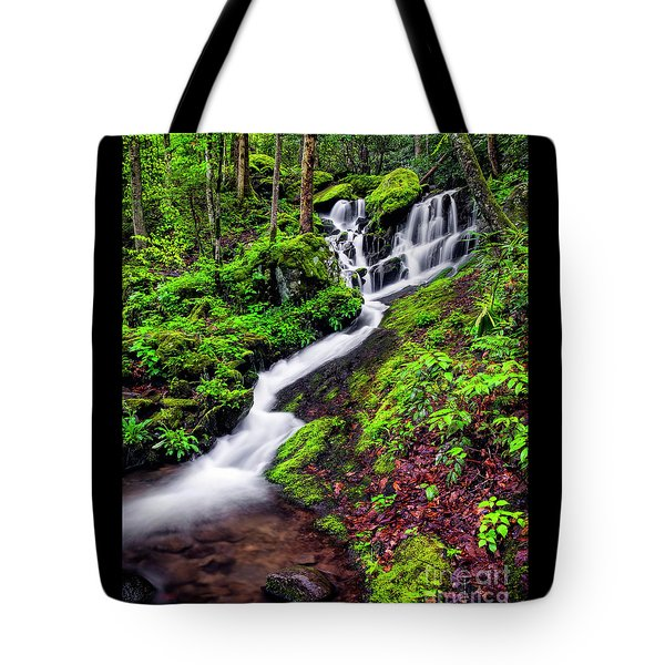 Tremont Area Waterfall Tote Bag by Madonna Martin
